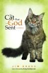 CatGodSentCover-e1363390500620